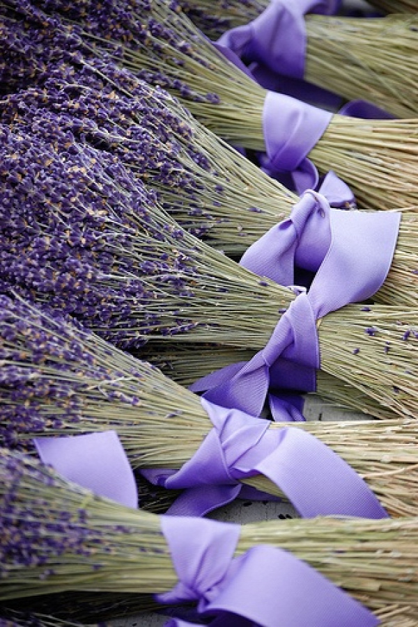 Lavender all tied up in matching ribbon #lavender #vignette #purple