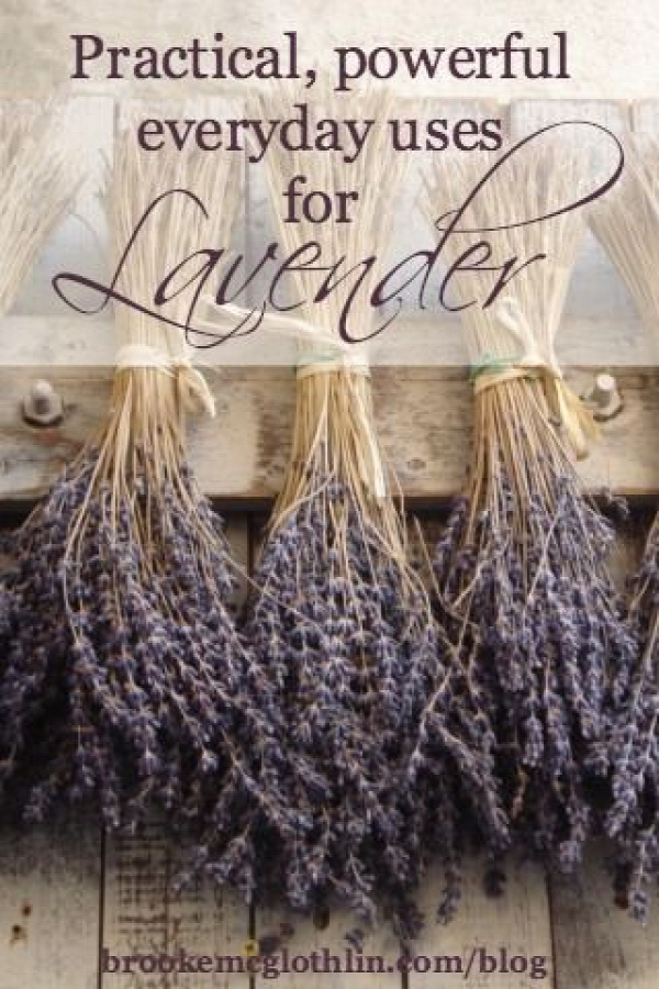practical, powerful, everyday uses for lavender
