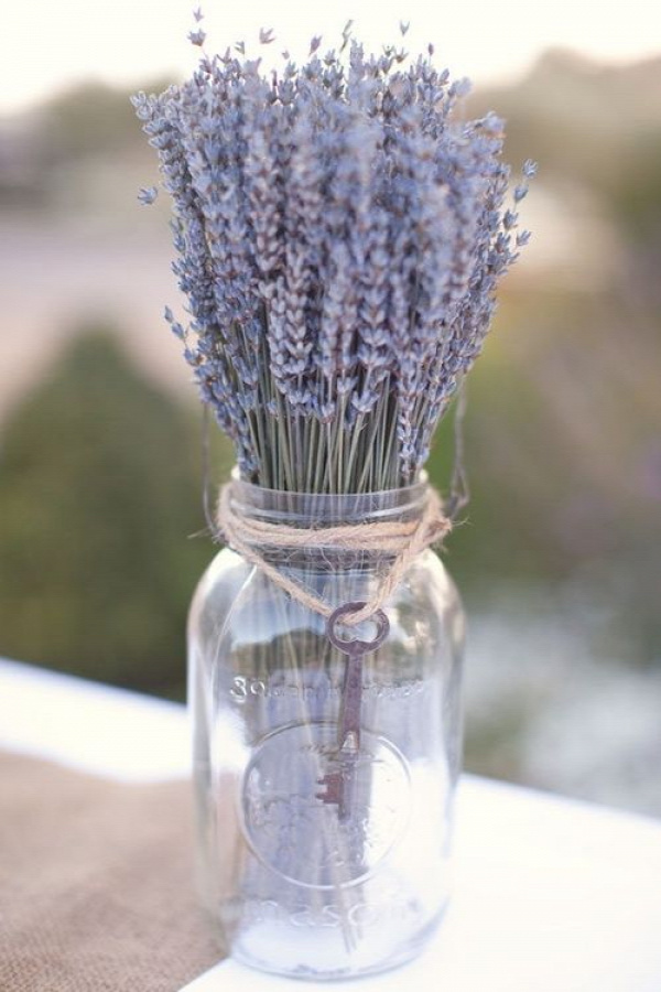 Lavender: I used to have a little bag of lavender potpourri when I was young that I would put under my pillow when I was having trouble sleeping. Maybe I need to get another one of these!