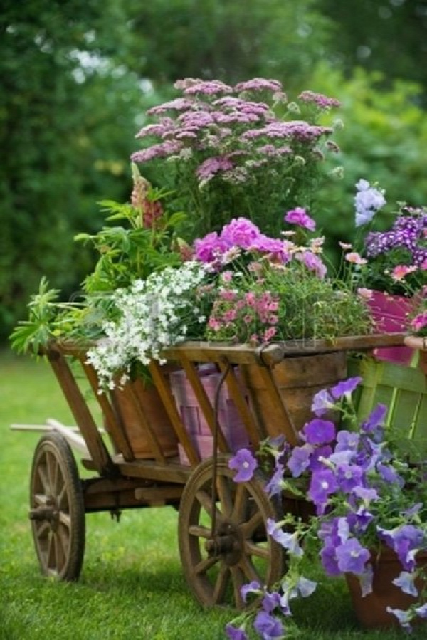 wheelbarrow-planter-3