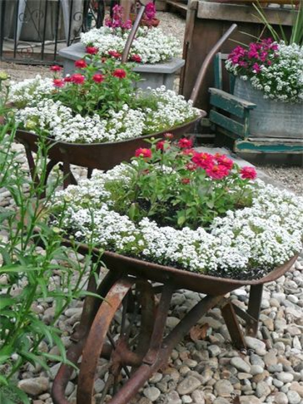 wheelbarrow-planter-5