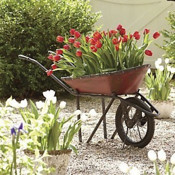 wheelbarrow-planter-8