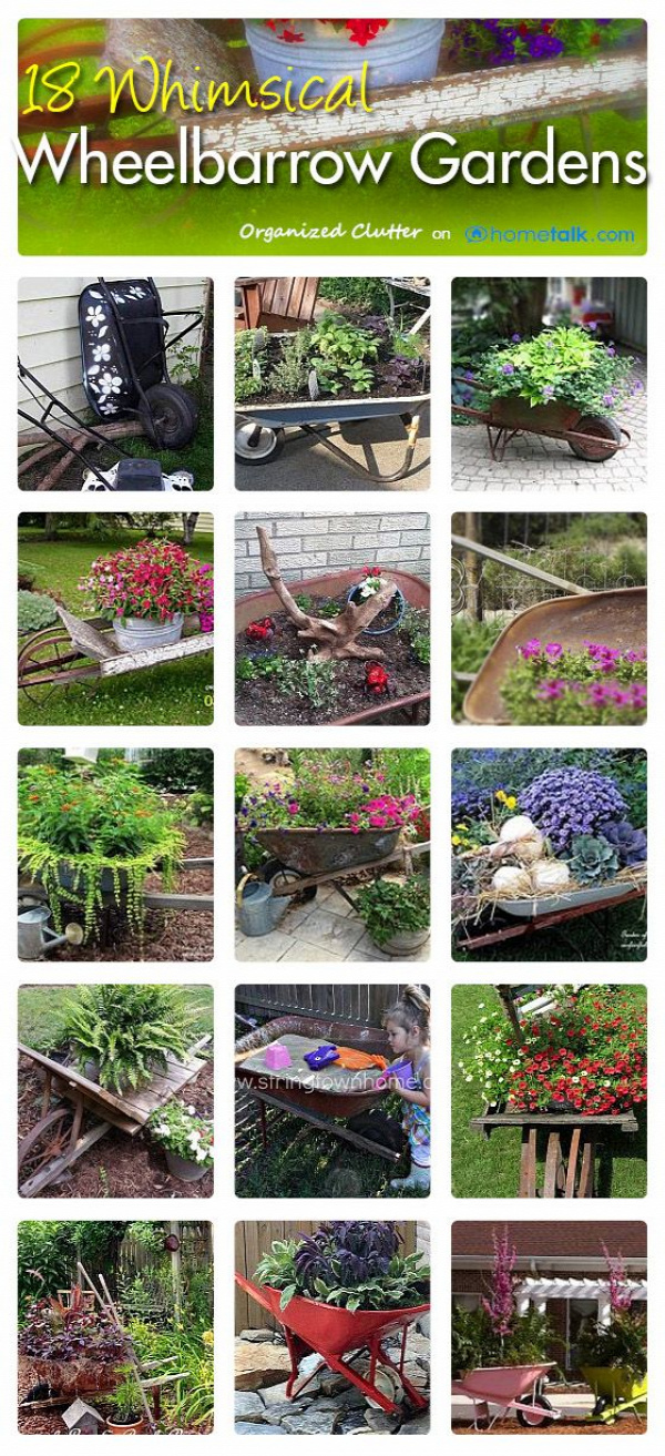 (link) Hometalk Clipboard - Garden Wheelbarrows - Organized Clutter ~//~ Garden: Plants & Planters on Pinterest | @djohnisee