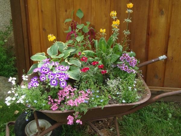 Wheelbarrow Planter  www.backyarddiva.ca