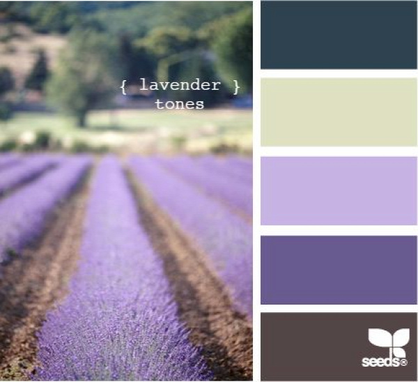 lavender tones - color swatches