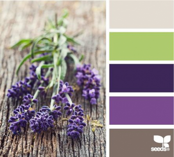 lavender tones - my favorite
