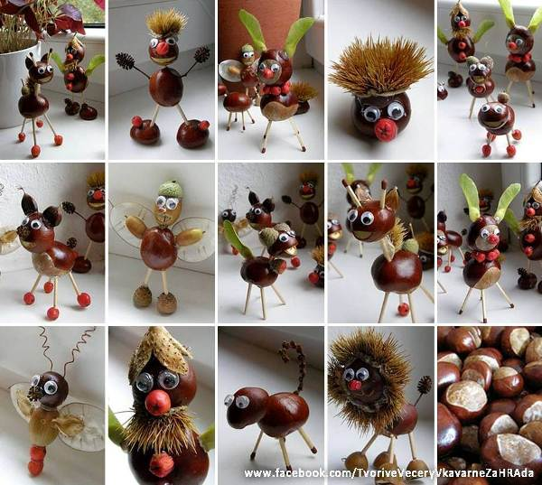 DIY-chestnut-animations-1