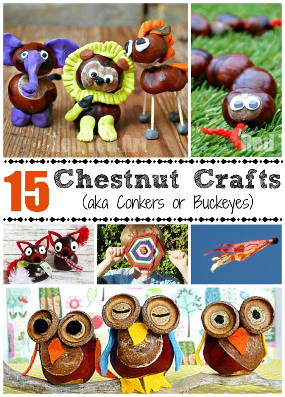 This is one of my most precious childhood memories - crafting with conkers (also known as horse chestnuts or buckeye crafts) - I love the smooth texture and the fun chestnut crafts you can make. Here re 15 lovely ideas for Fall