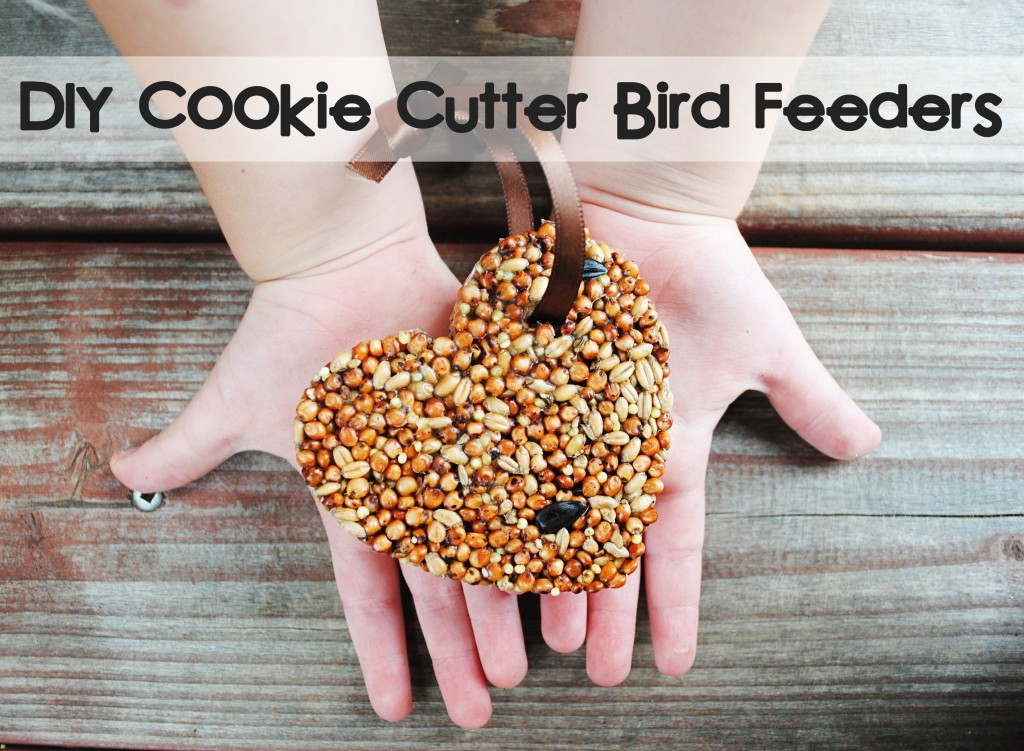 Things You Never Thought to Do With Christmas Cookie Cutters-DIY Cookie Cutter Bird Feeders