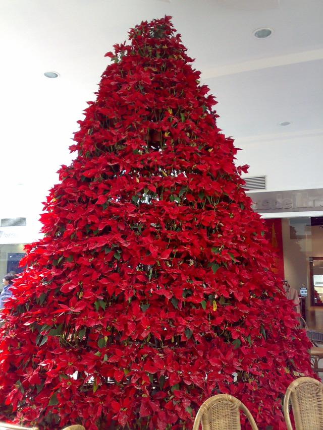 karácsonyfa díszek mikulásvirág