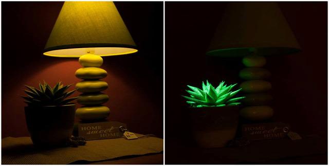 világító növény