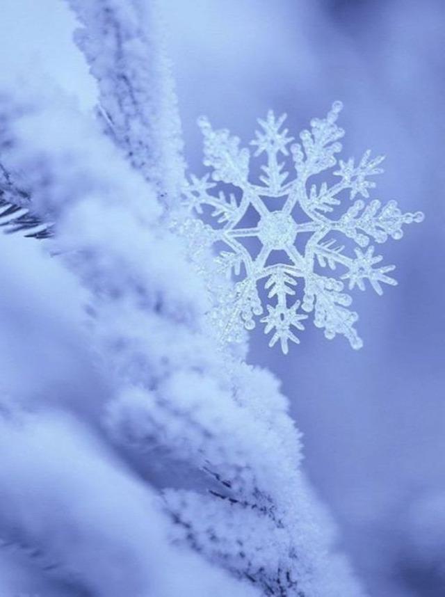 régi népélet naptára télfordulás időjárás