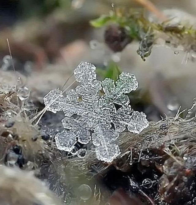 január vízkereszt farsang időjárás