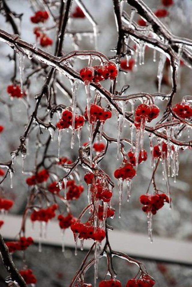 régi népélet naptára Katalin időjárás dologtiltás karácsony