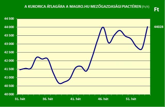búza kukorica gabonapiac magro.hu