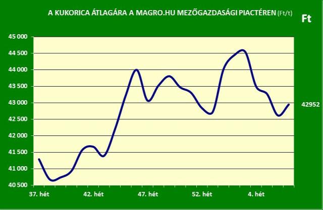 gabonapiac búza kukorica Magro.hu
