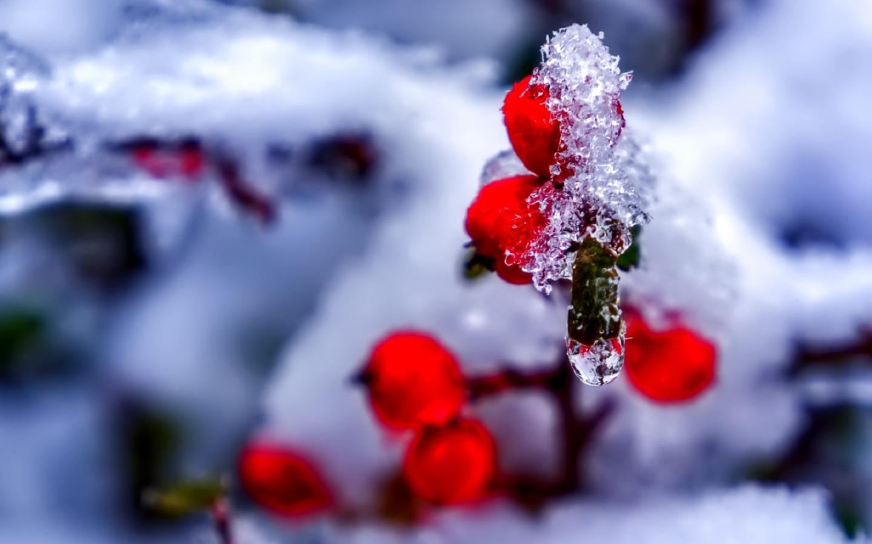 január vízkereszt régi népélet naptára időjárás tél