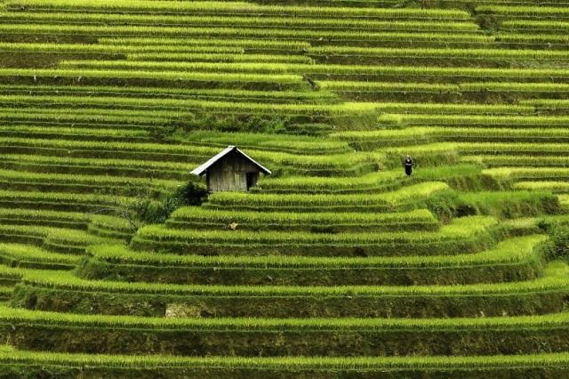 ázsia vietnam