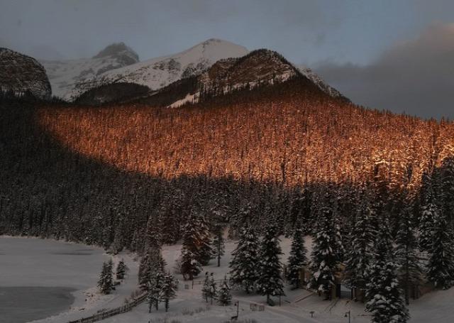 alpesi sí lesiklás Lake Louise Kanada Ilka Stuhec Sofia Goggia Kajsa Kling Lara Gut Viktoria Rebensburg Stacey Cook
