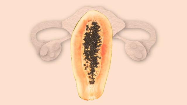 papaya fogamzásgátlás természetes fogamzásgátlás