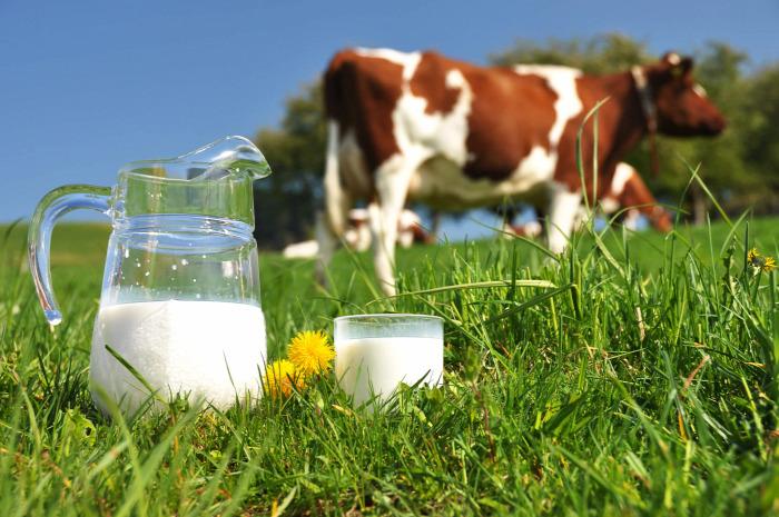 tej pasztőrözés pasztörizálás szalmonella lisztéria kóli