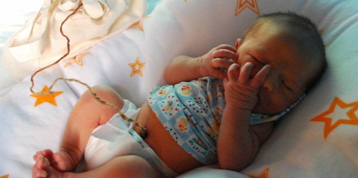 méhlepény placenta lótusz szülés lótuszszülés placentofágia köldökzsinór
