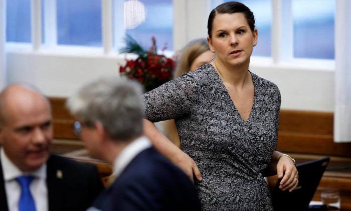 anyaság dánia parlament