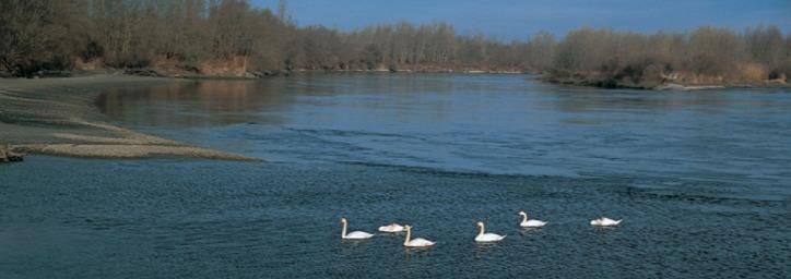 bioszféra-rezervátum UNESCO Duna Dráva Mura