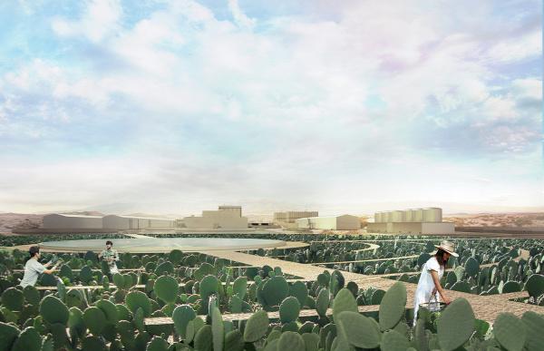 aszály globális felmelegedés kaktuszfarm