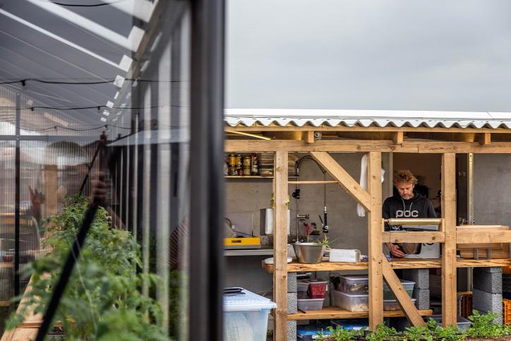 rooftop tetőkert közösség által támogatott mezőgazdaság fenntartható gazdálkodás