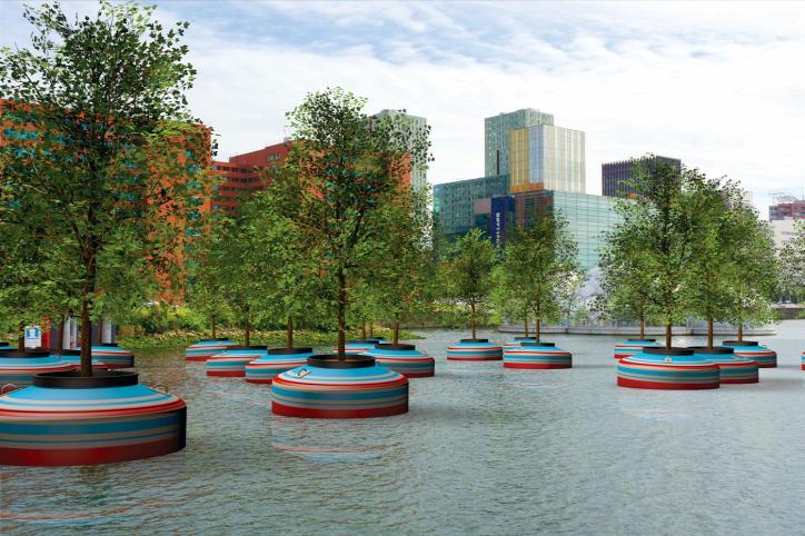 úszó erdő Rotterdam fásítás zöldítés