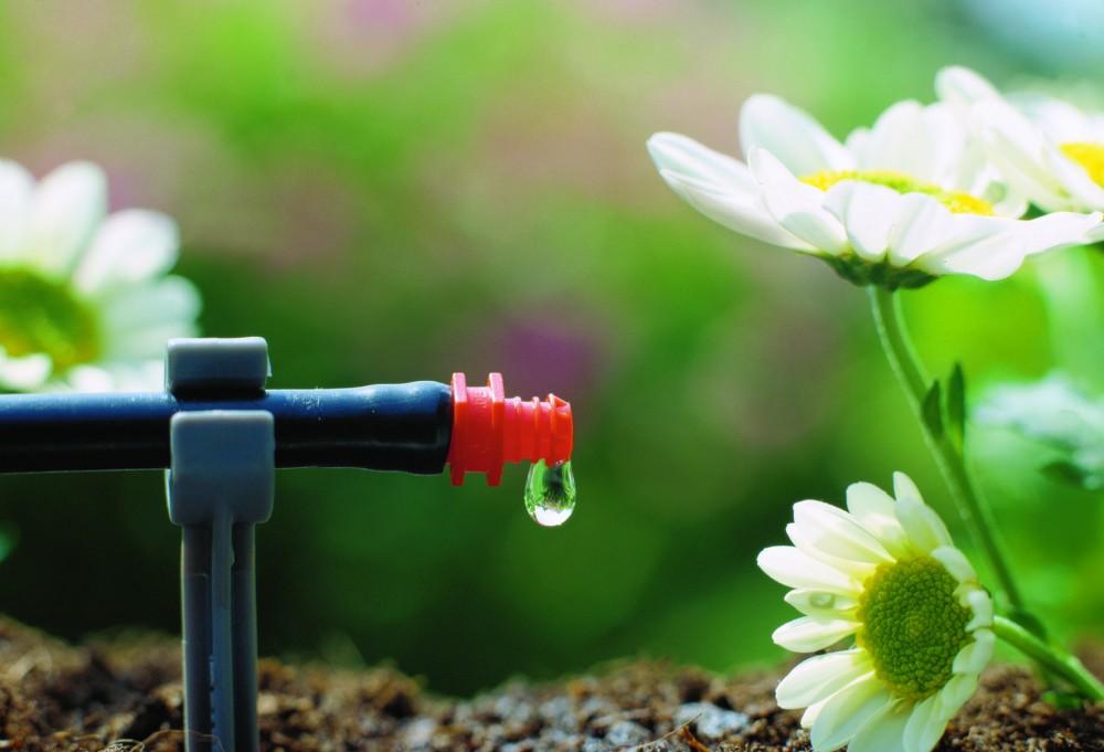 víztakarékosság kertgondozás locsolás