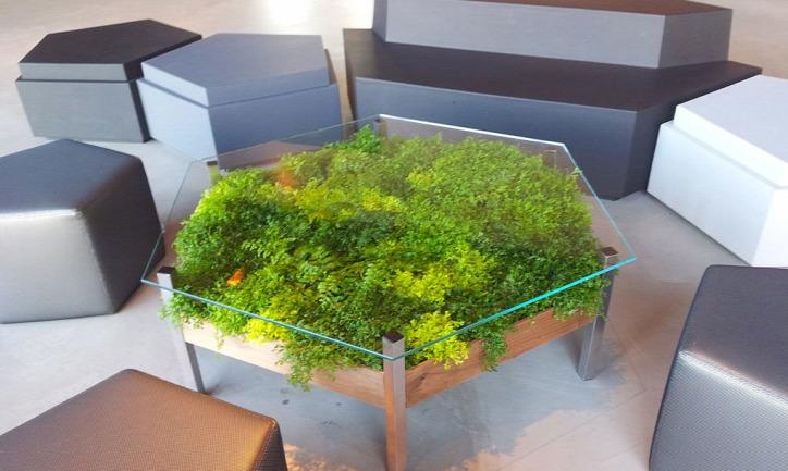 újrahasznosítás otthon növény barkácsolás karácsony ajándék vivarium