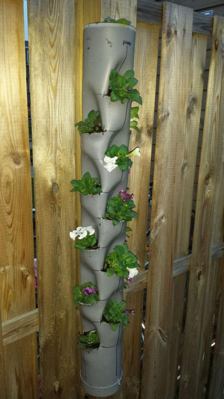 otthon kert újrahasznosítás fűszerkert