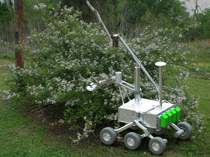 robotméh beporzás BrambleBee méh