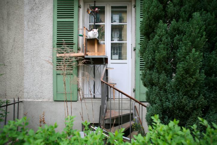 macskalépcső Svájc Brigitte Schuster