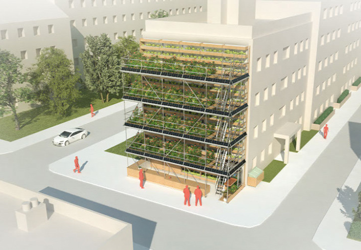 városi kert urbanisztika közösségi kert vertikális kert raklap újrahasznosítás