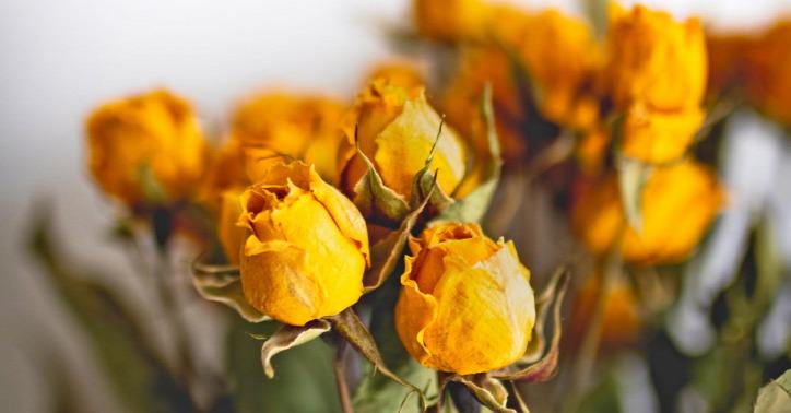virág fenntartható nőnap