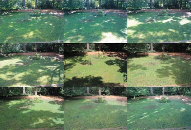 naptérkép kert otthon nyár napsütés