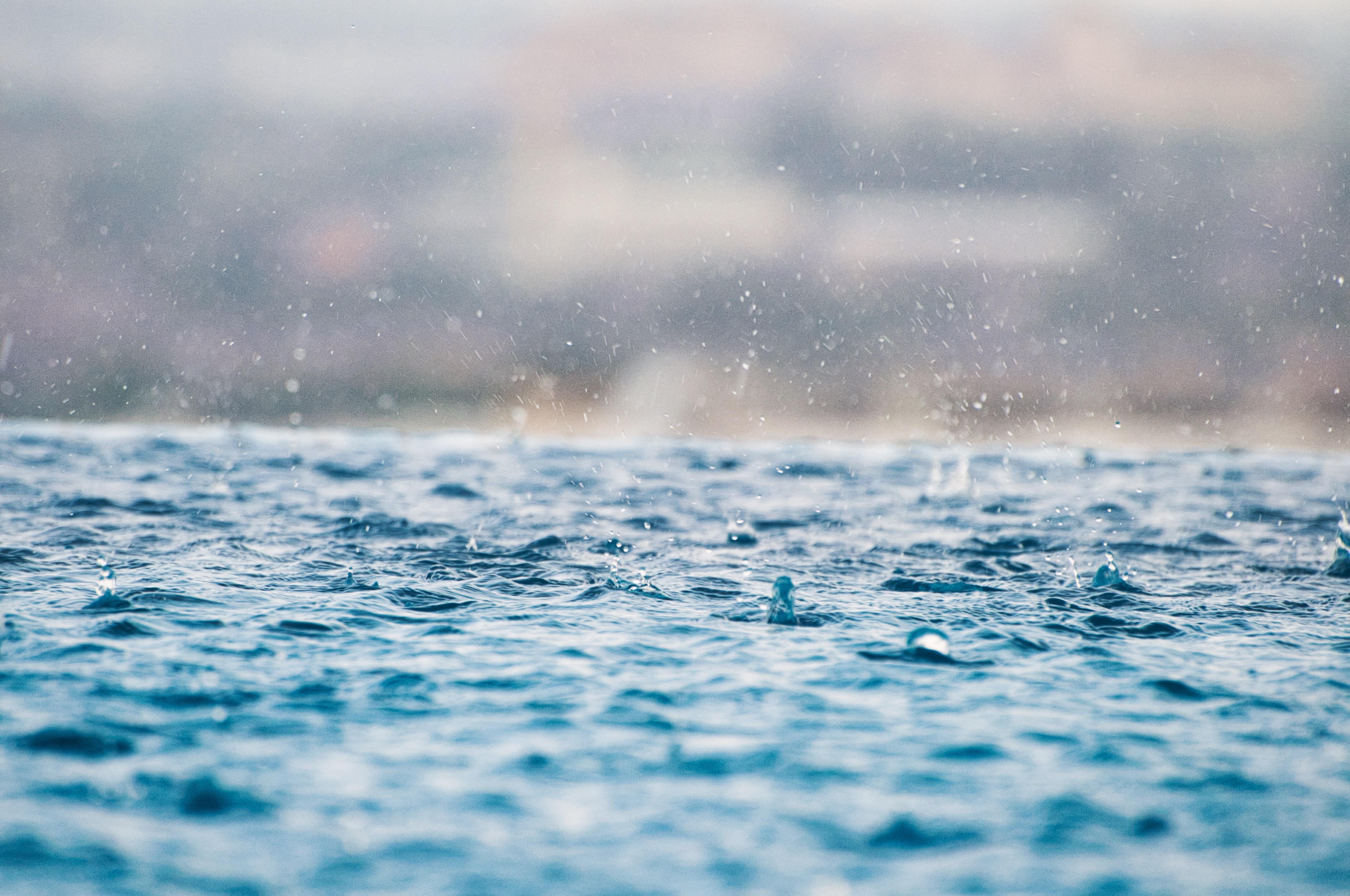 Ezért is okozhat tömeges halpusztulást egy nagy eső