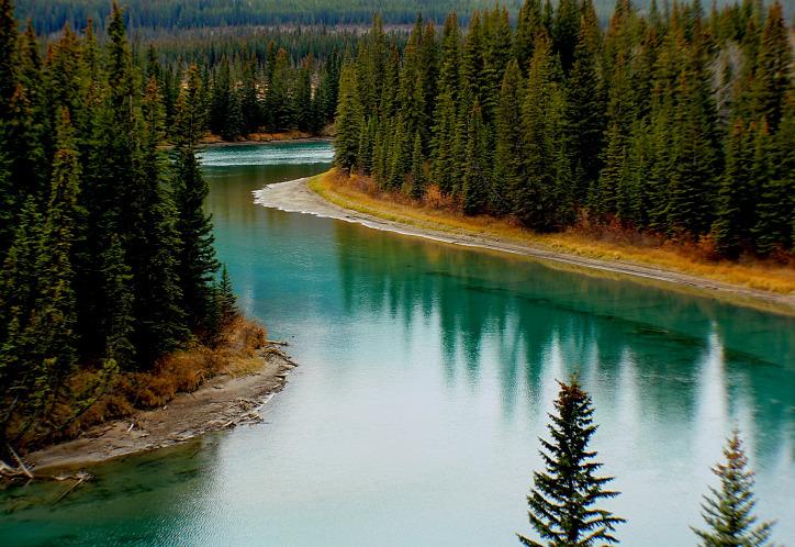 természetvédelem folyó klímaválság környezetszennyezés alga természet