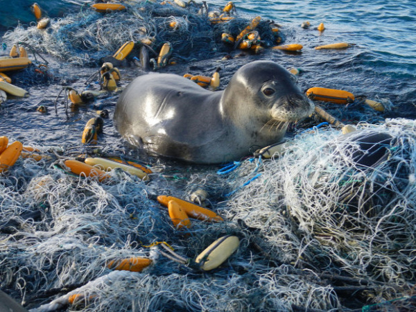 óceáni hulladék újrahasznosítás műanyag