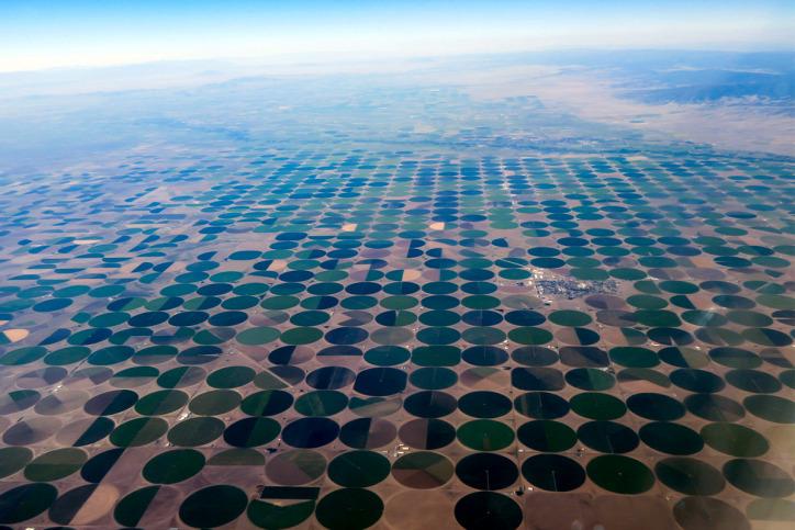 kukorica fenntartható mezőgazdaság cirok köles Ogallala