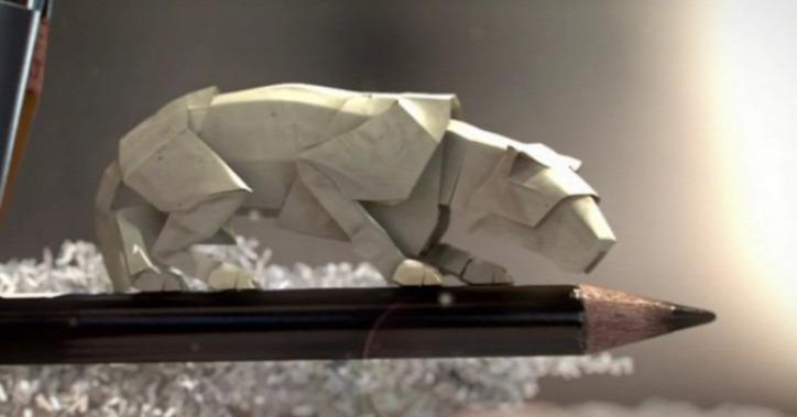 paper world animációs film természetvédelem WWF