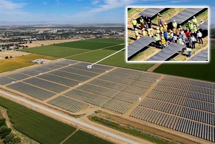 napelem szolárfarm megosztott növénytermesztés solar sharing fenntartható mezőgazdaság