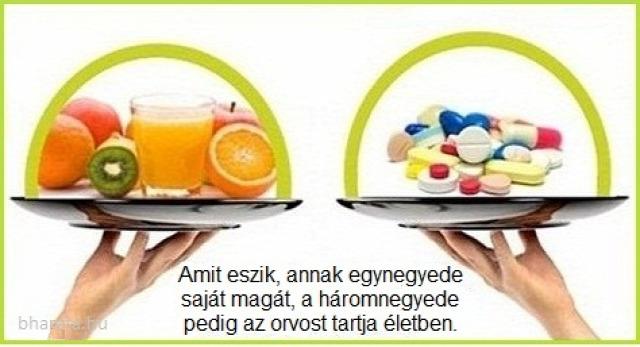 egészség főzés
