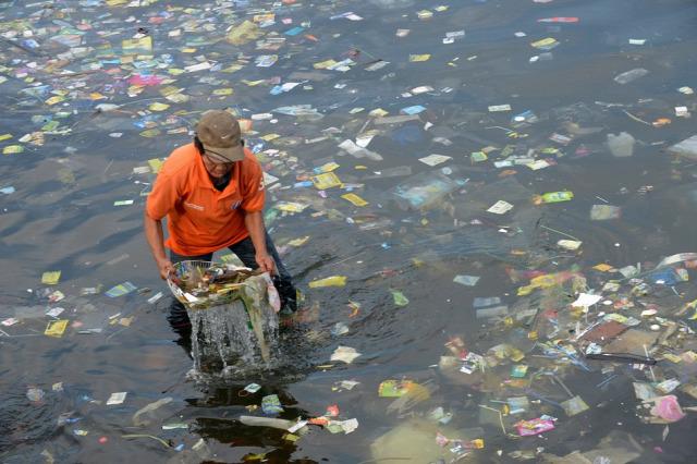 környezetvédelem társadalom