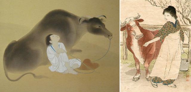 ahimsza kutatás sport tradíció állatok egészség