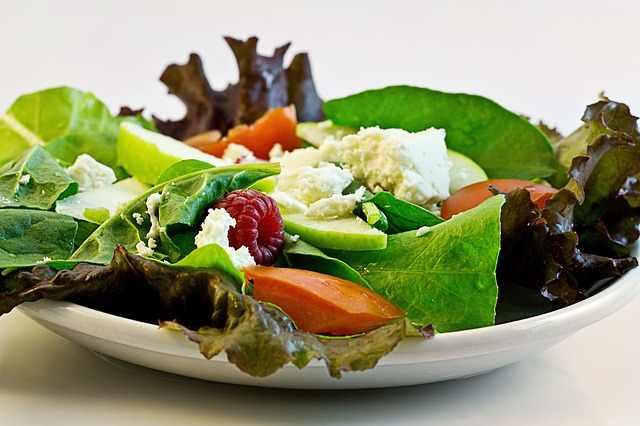 táplálkozás ájurvéda egészség filozófia