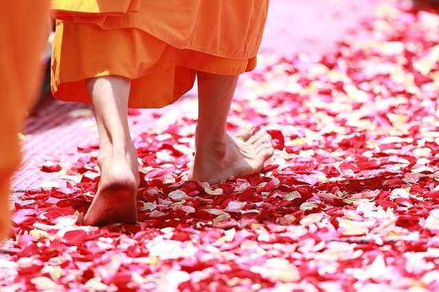 jóga hatásai egészség meditáció kutatás